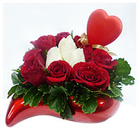 Breathtaking Red and White Roses for Valentine's Day
