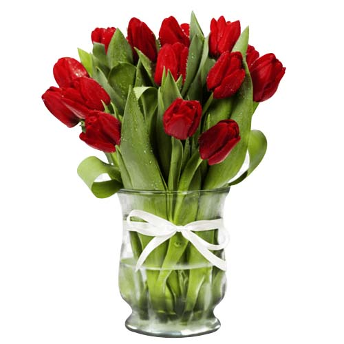 Extravagant Selection of 12 Red Tulips on Valentines Day