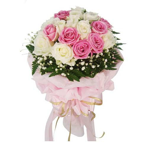 Glorious 18 Pink and White Roses on Valentines Day for Your Loved Ones