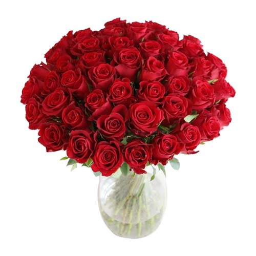 Blushing 50 Red Roses Arrangement for Your Loved Ones on Valentines Day